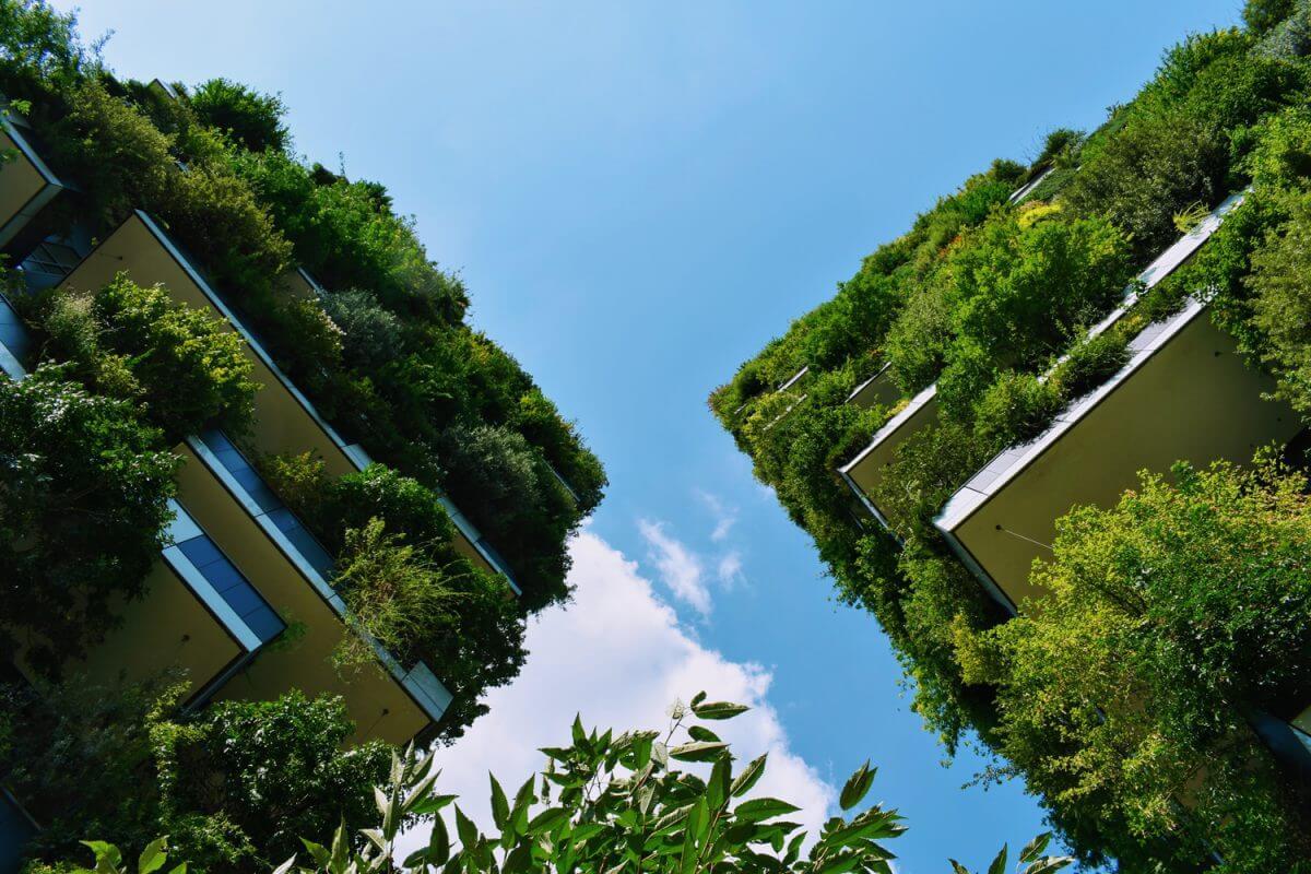 7 Medidas clave para reducir el cambio climático